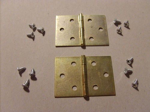 A pair of 25mm Hinges and Screws