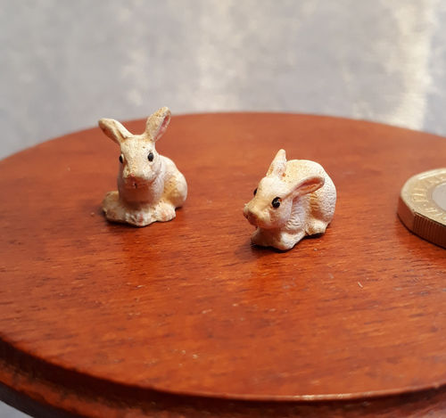 A Pair of Rabbits