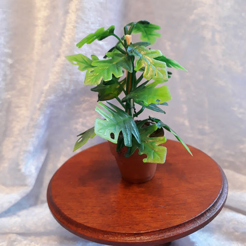 Potted Foliage Plant 3