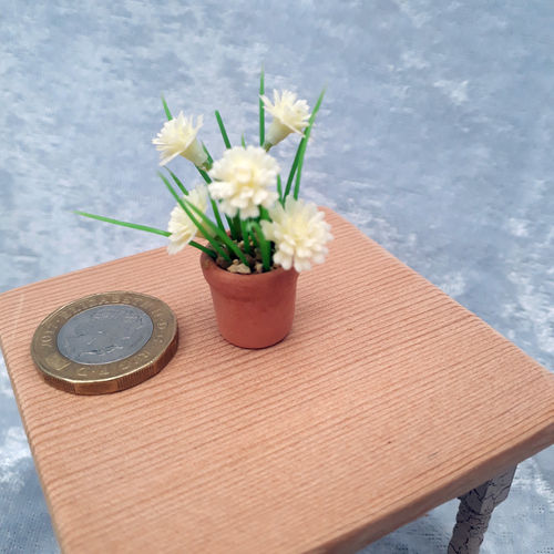 Potted Flowering Plant 7